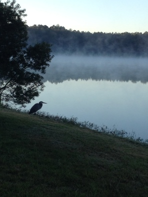 Luna Lake Robins AFB