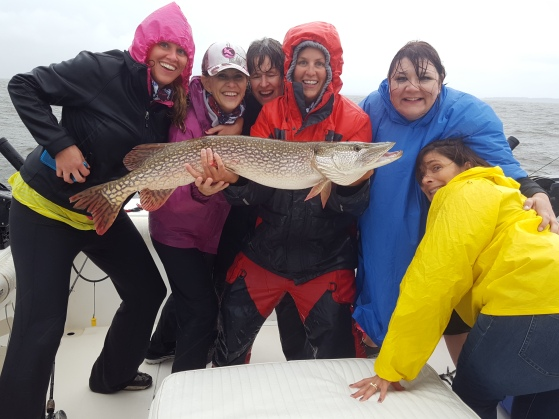 41 inch Northern Pike on Lake of the Woods