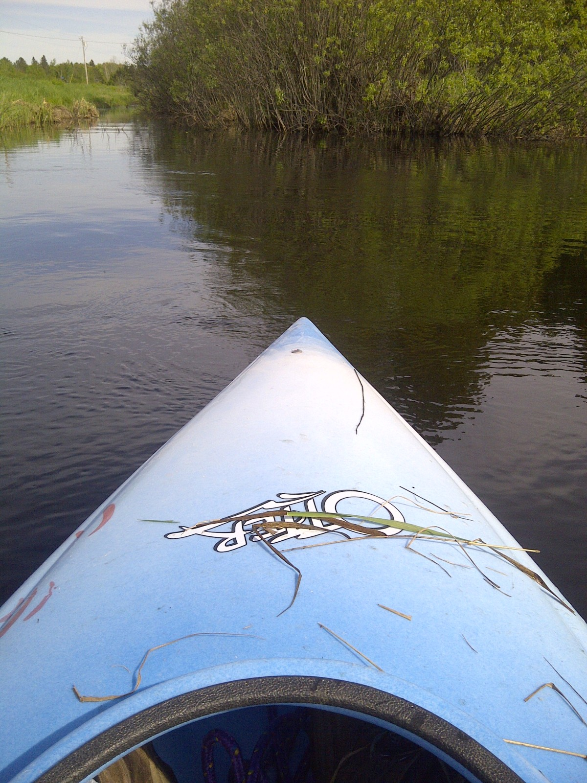 paddle on the Moose Horn