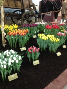 One of the many displays at the Lentetuin