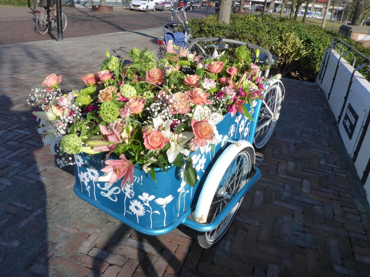 flower wagon in Hillegom