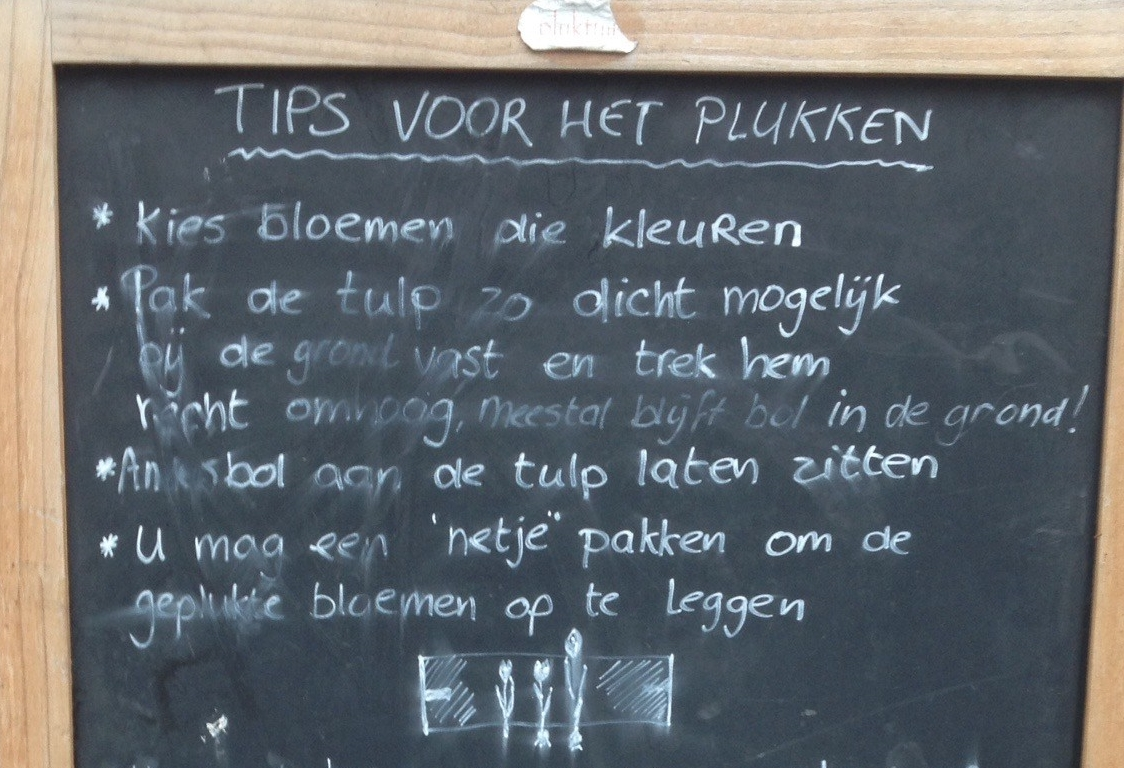 Annemeike tips for plukken