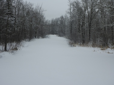Kettle River at CR 156 looking North on March 28.