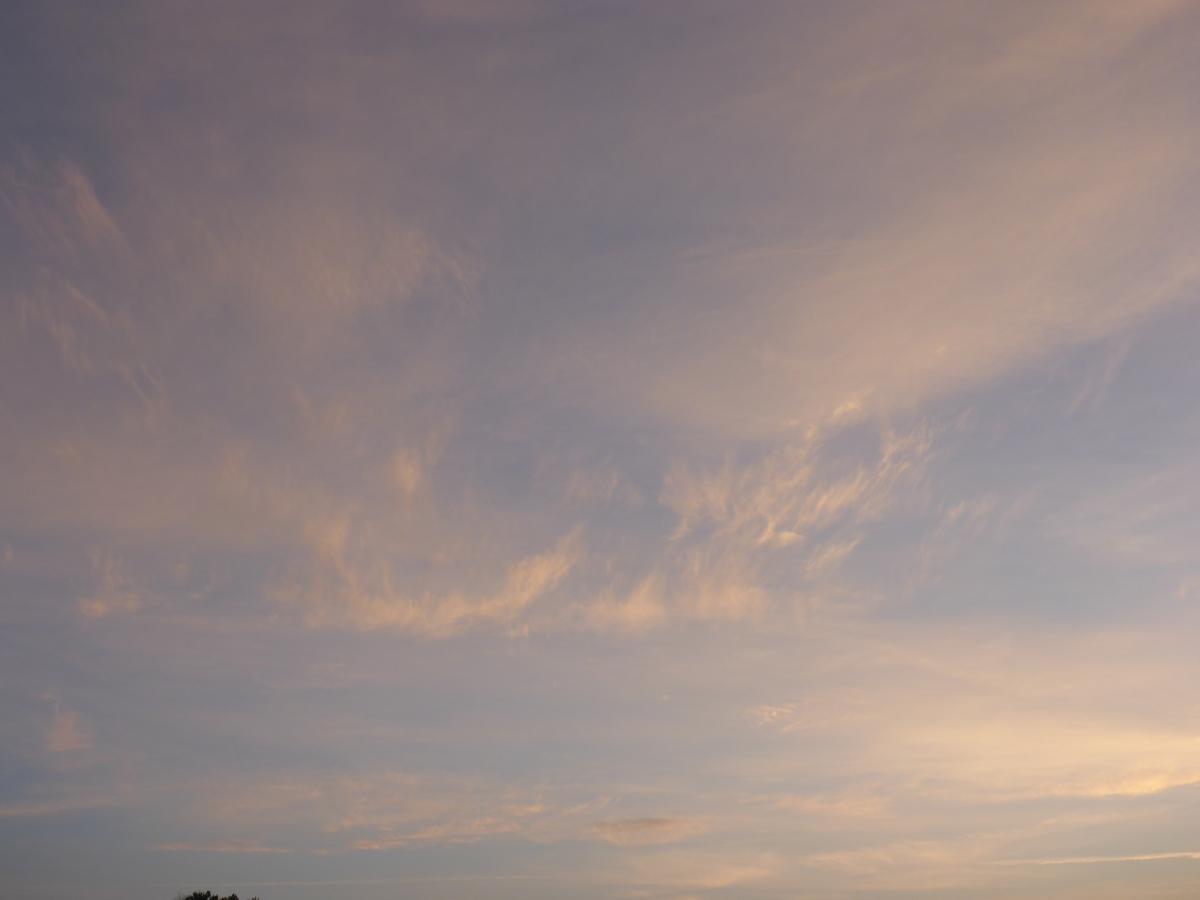 Hanging Horn Sky