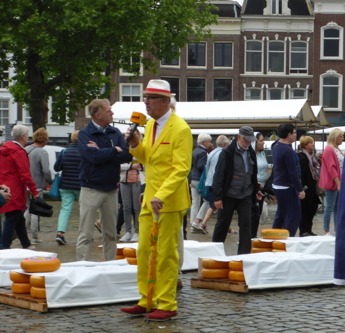 Master of The Cheese Market