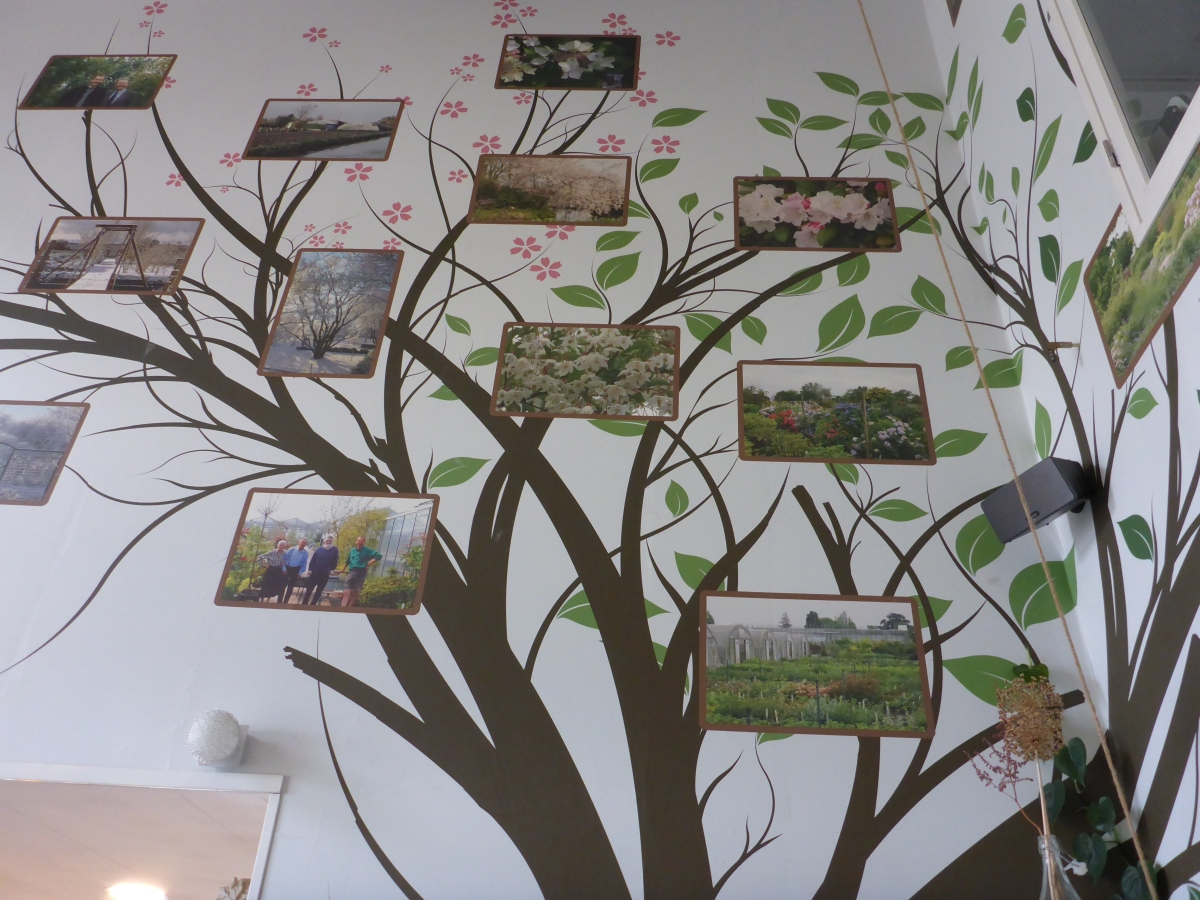 The History Tree of Esveld