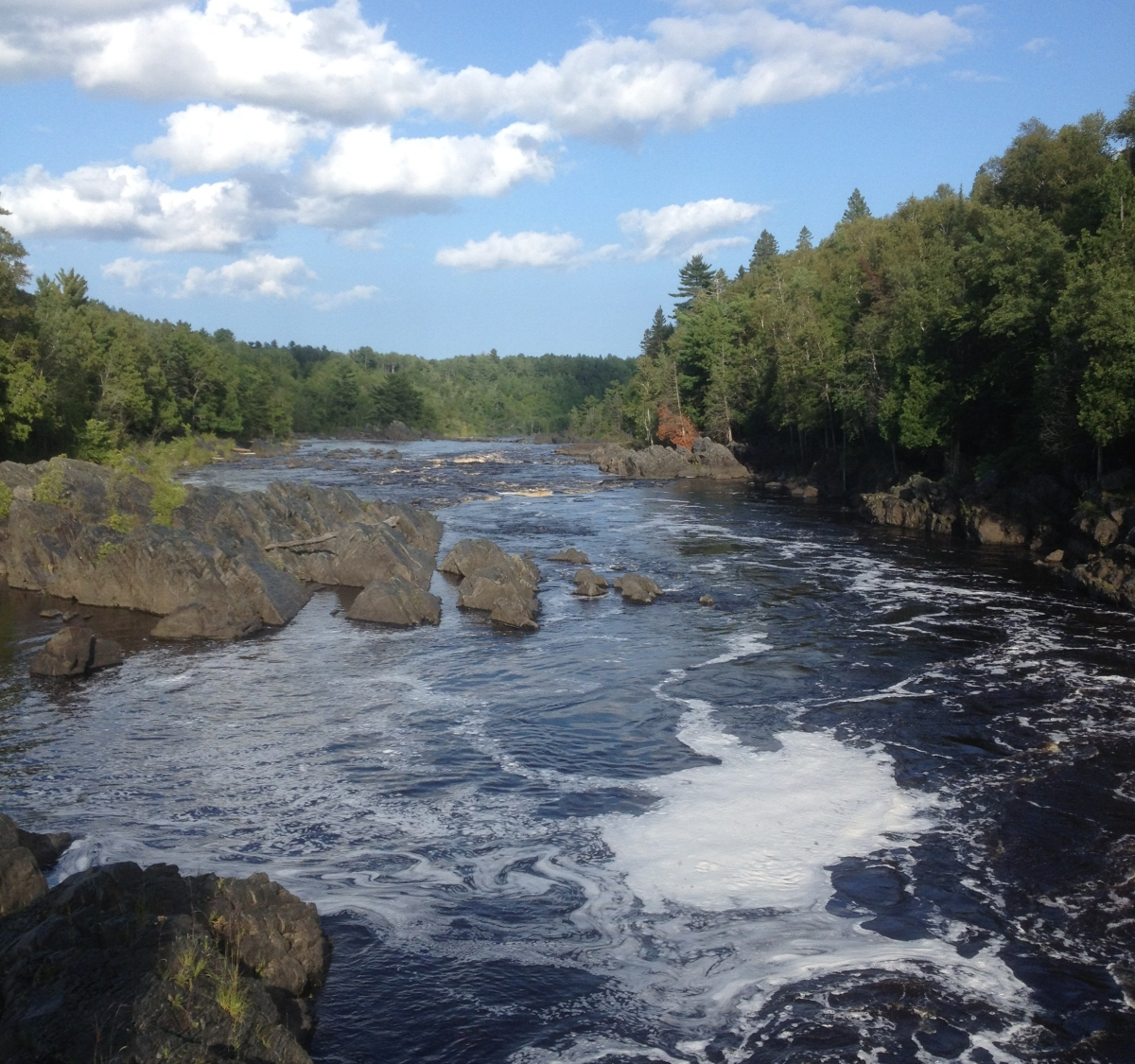 Jay Cooke State Park, St Louis River