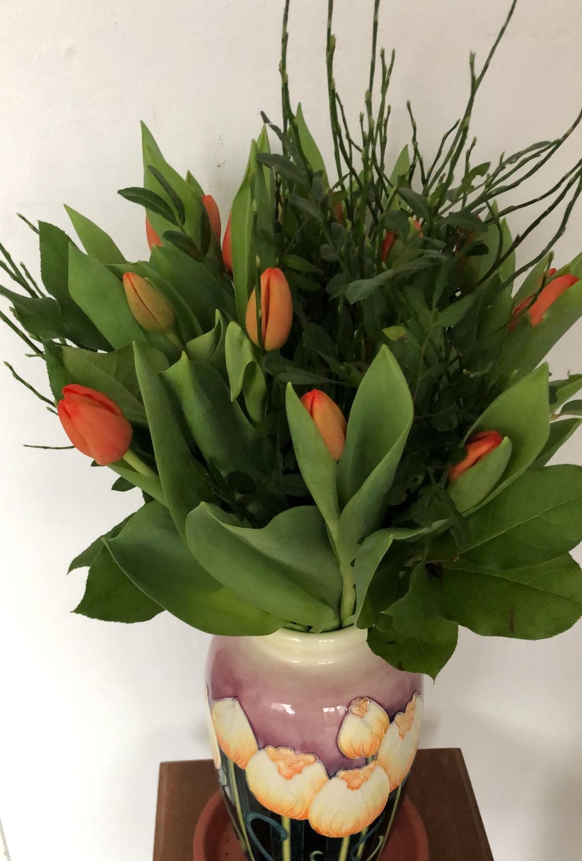 My tulips on Thursday