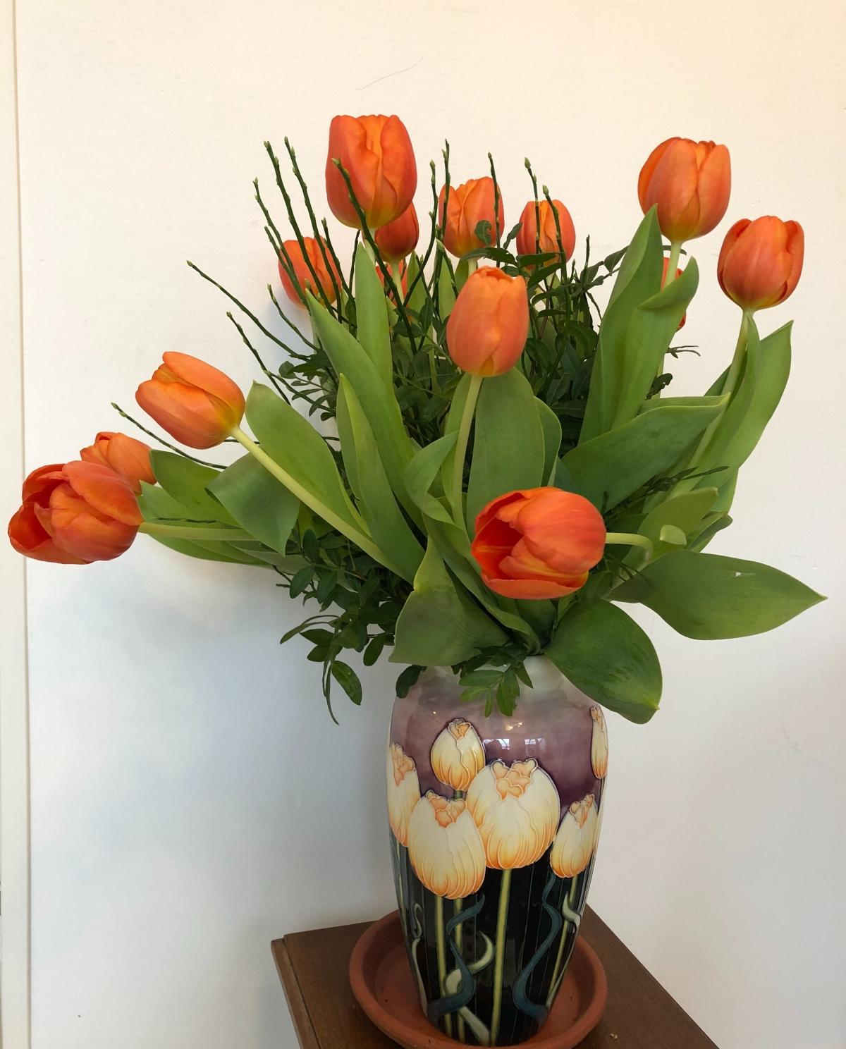 Monday the same tulips
