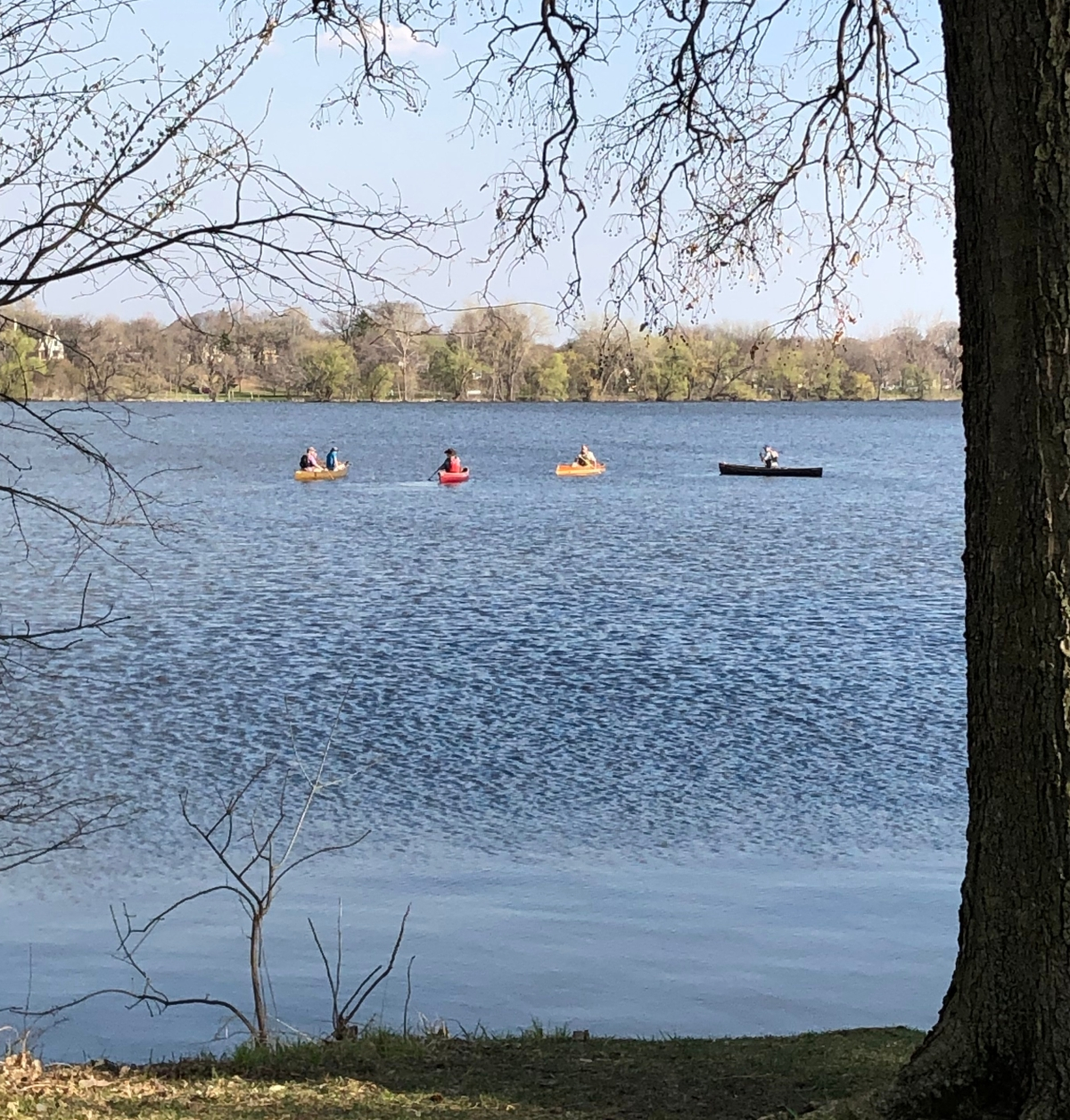 Canoes on Lake Nokomis on Demo Day