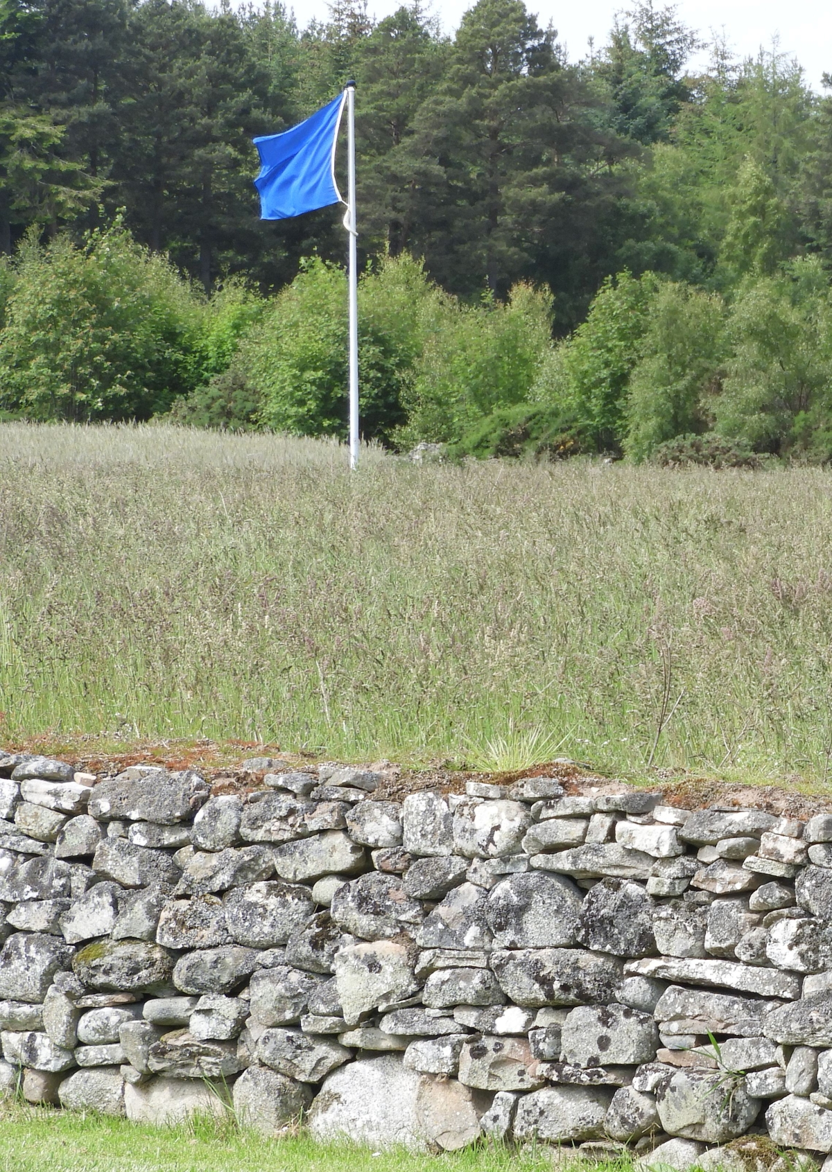 One of the blue flags representing the Jacobite battle lines