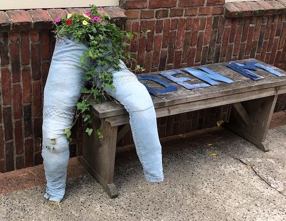 Jean planter