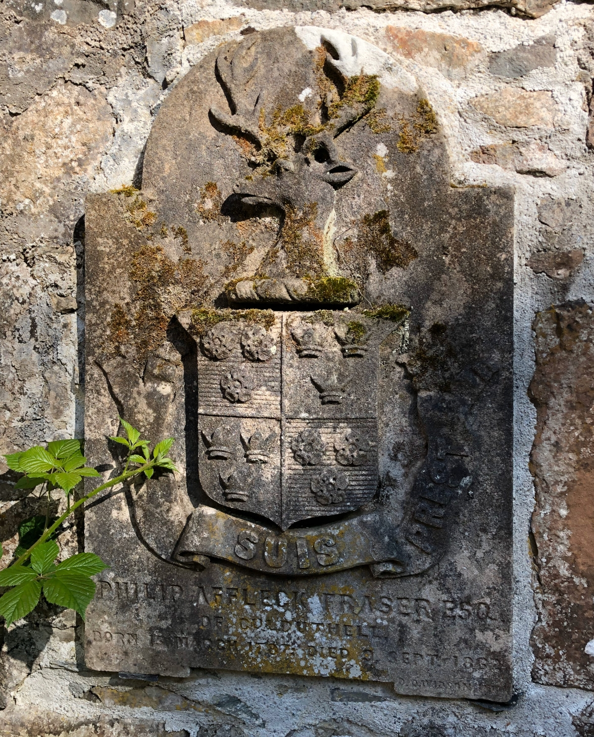 The Frasier Clan Crest  on one of the early gravesites
