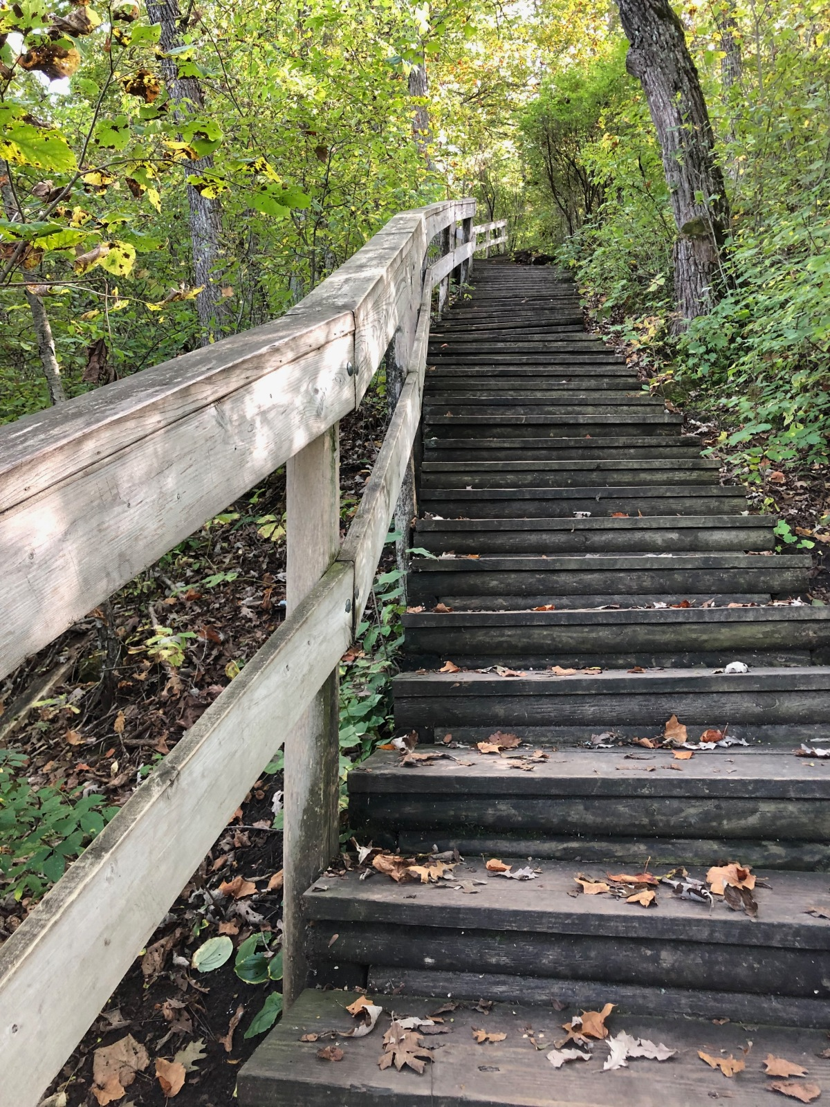 The steps to the Fire Tower