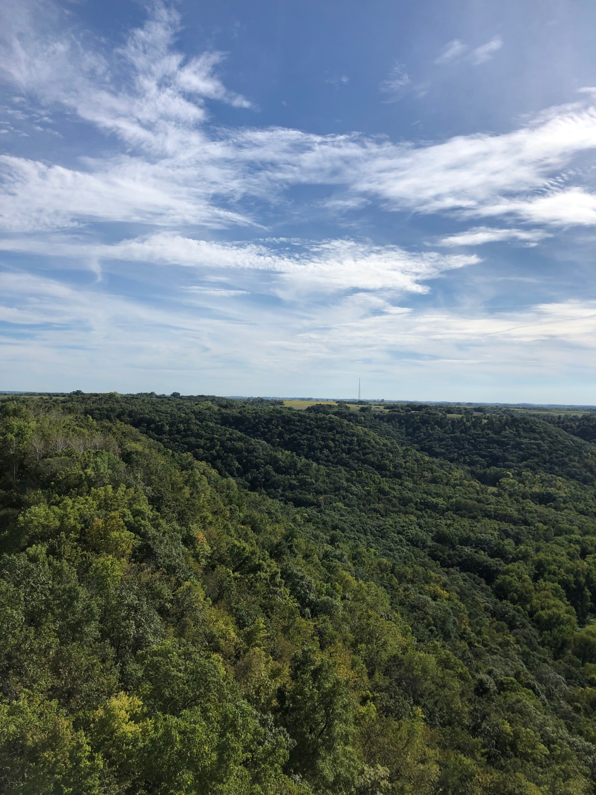 One of the views from the Fire Tower Lookout.