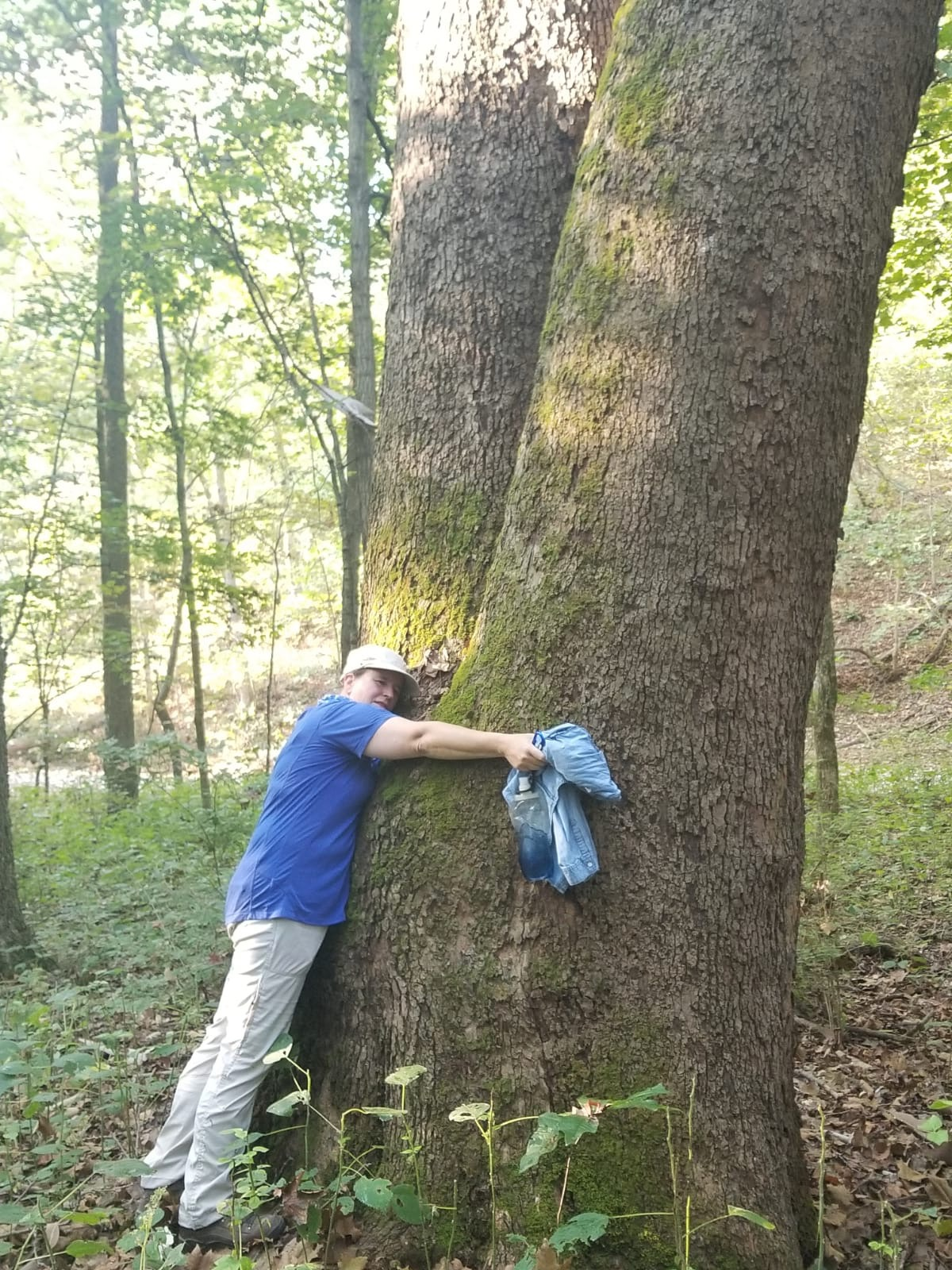 Hugging a Grand Daddy tree at the Lewis and Clark Trail
