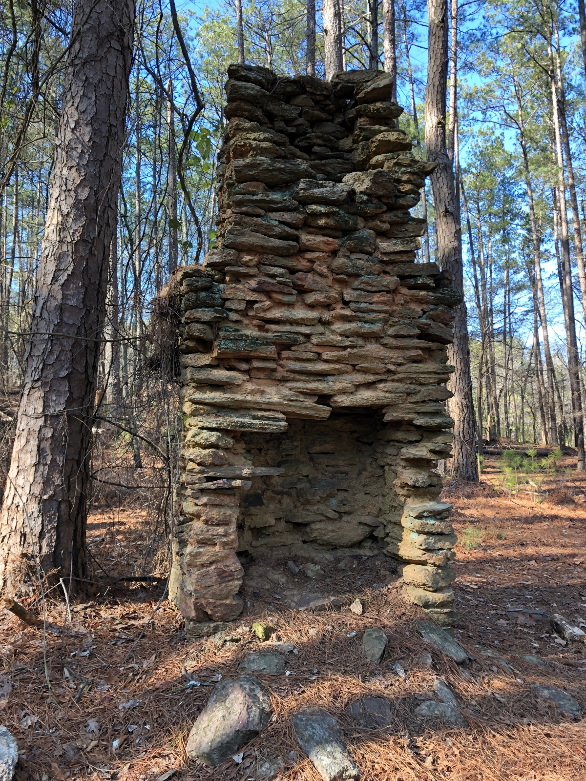 Homestead Chimney at Red Top Mountain State Park