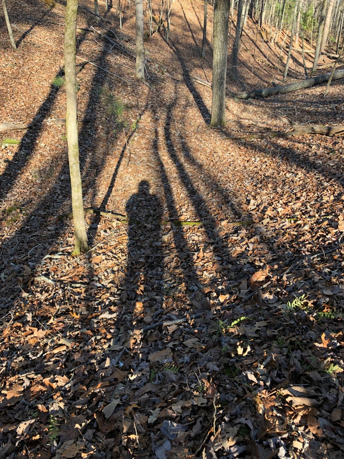 My shadow hiking partner