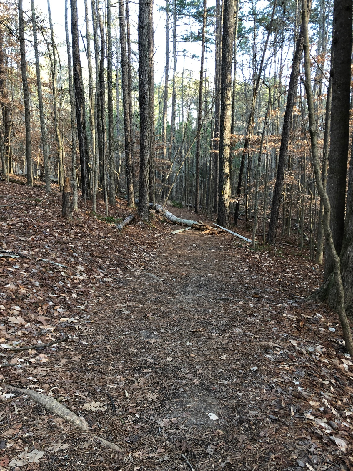 Red Top Mountain Homestead Hiking Trail