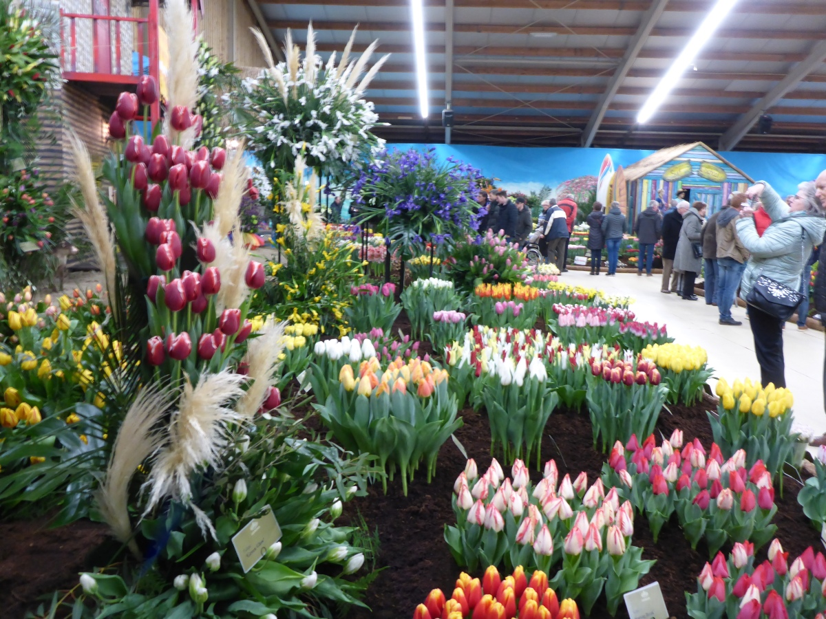 Thousands of flowering bulbs and arrangements