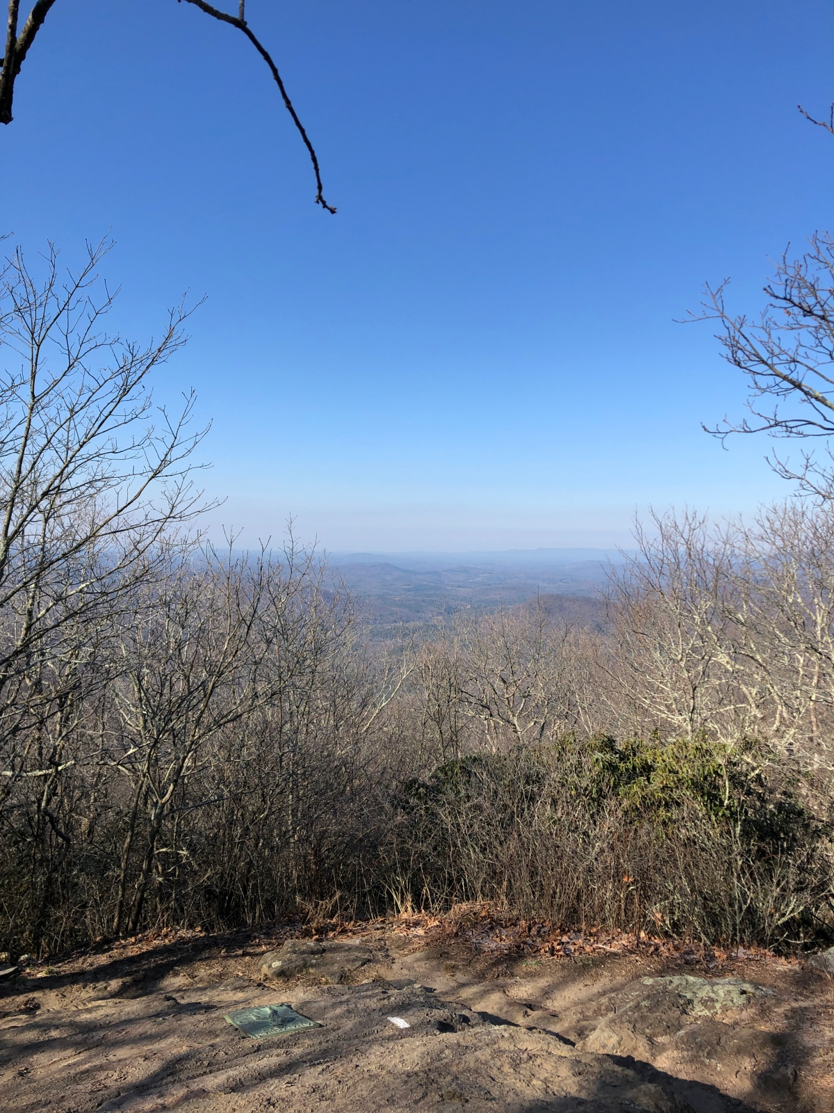 The view from Springer Mountain
