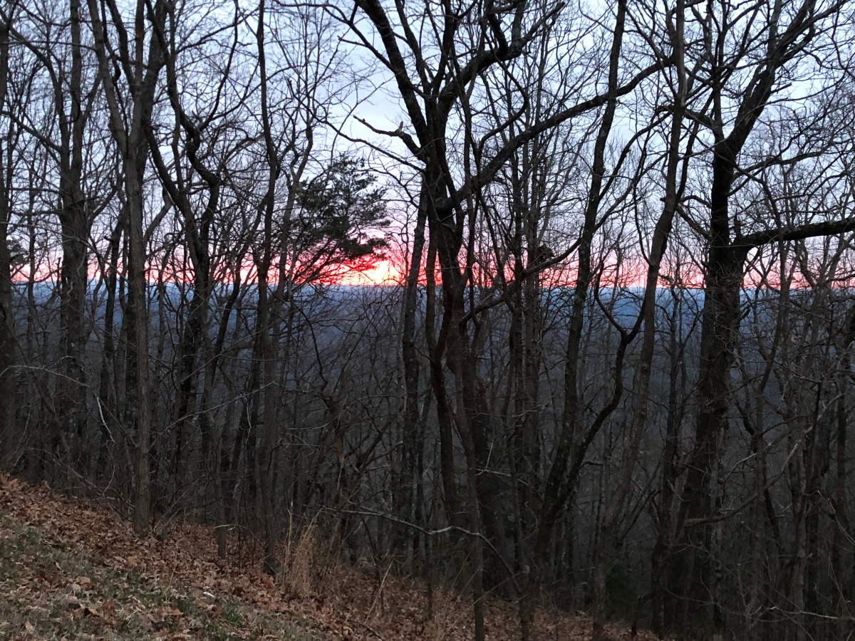 The early morning view from Amicalola Falls State Park Lodge