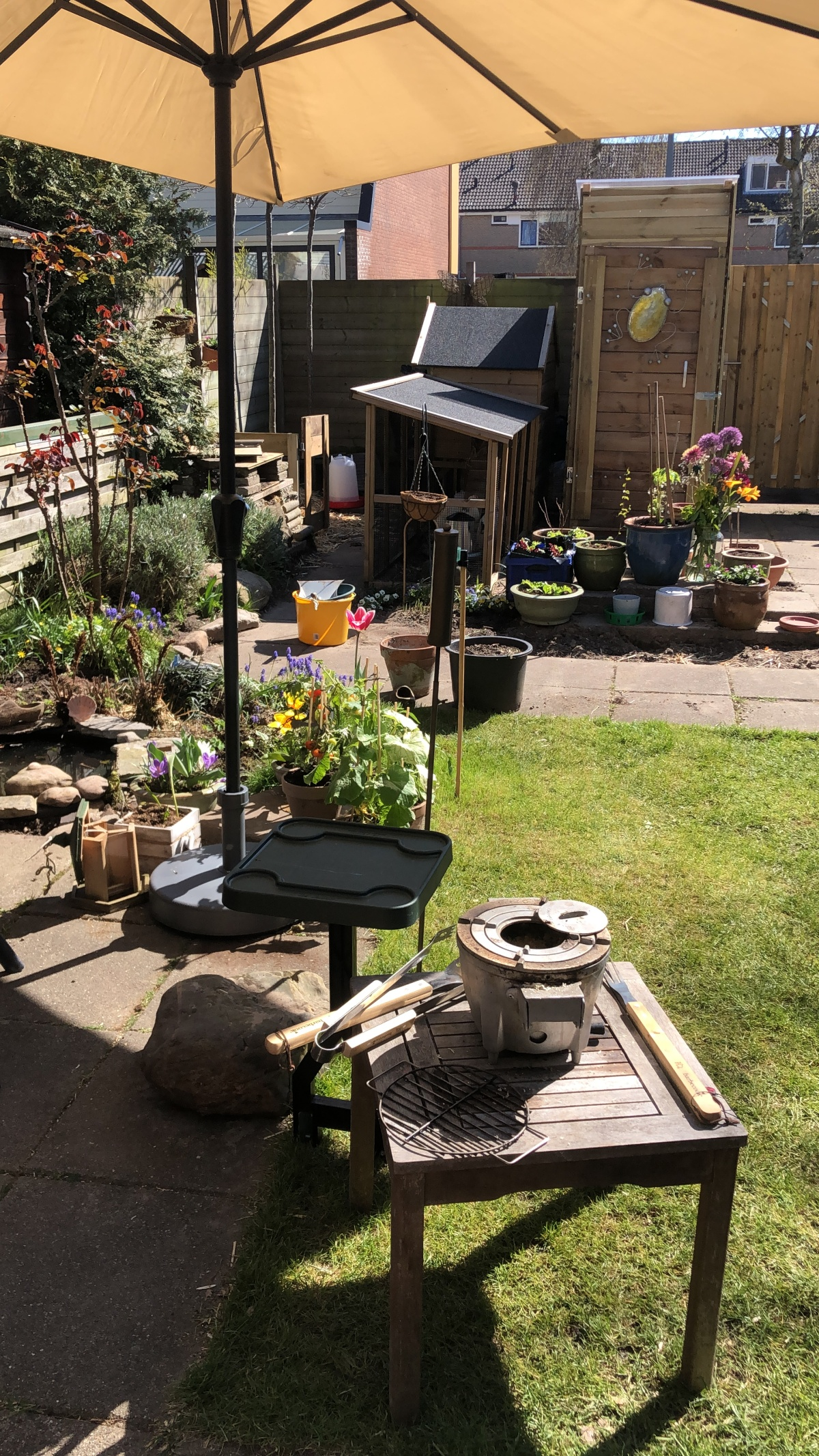 Our back garden this week, mid day.